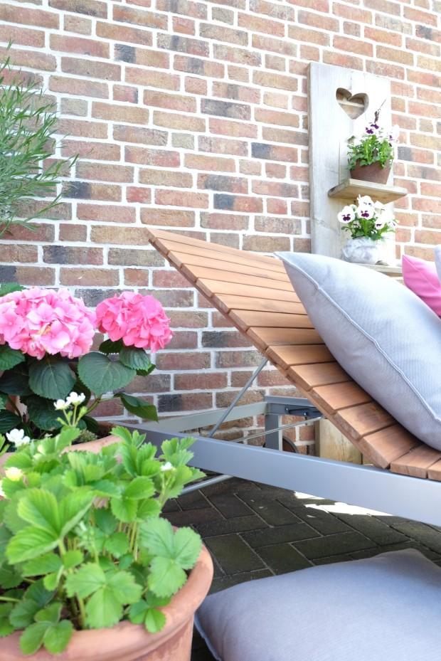 Gartentipps Frühling 12