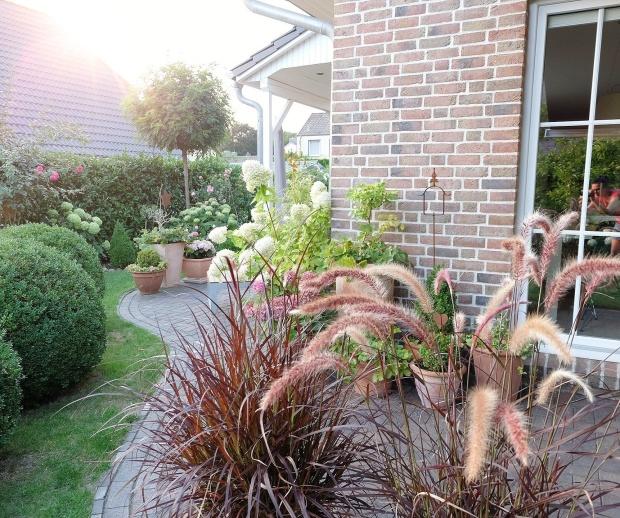Herbst Garten 30