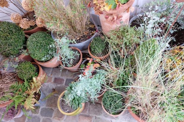 Winterlich Dekorieren Im Garten