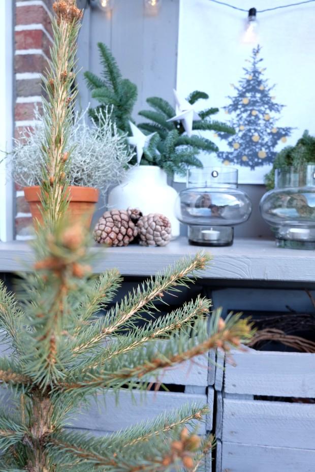 Vogelhäuschen DIY Weihnachten Geschenk 1