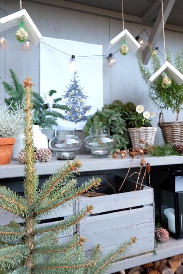 Vogelhäuschen DIY Weihnachten Geschenk 3